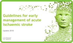 Guidelines for early management of acute ischaemic stroke