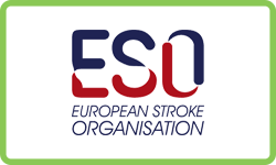 European Stroke Organisation
