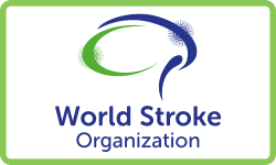World Stroke Organization (WSO)